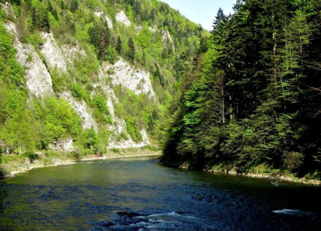 Spływ Dunajcem – atrakcja jakiej nie można przeoczyć